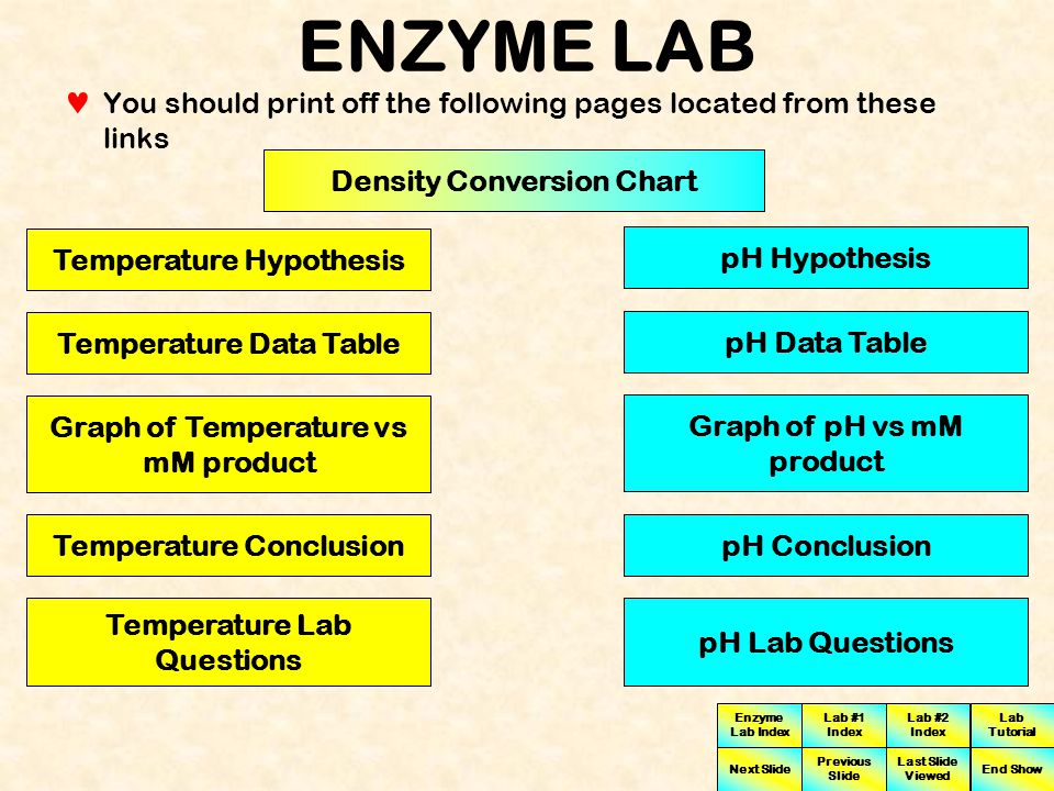 Enzyme Lab Index Lab #1 Index Lab #2 Index Next Slide Previous Slide Last Slide Viewed Lab Tutorial End Show ENZYME LAB This button is utilized to give information on when or how to use a specific piece of lab apparatus These buttons are utilized to go to examples of graphs or tables which may be more helpful if you print them off Turn a Machine On Click to View Data Table Click to View Graph Click To Go To Conversion Chart This button is utilized to link to conversion charts which are helpful in entering the correct values in the data tables You probably want to utilize this button next