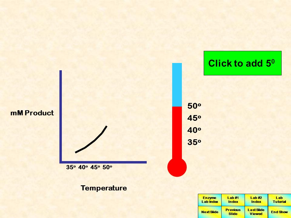 Enzyme Lab Index Lab #1 Index Lab #2 Index Next Slide Previous Slide Last Slide Viewed Lab Tutorial End Show Mm of Product Temperature in degrees Celsius 3035404550556065707580 0 1 2 3 4 5 6 7 8 9 10