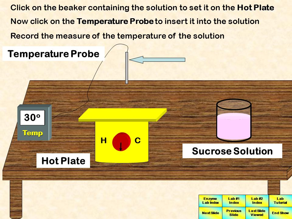 Enzyme Lab Index Lab #1 Index Lab #2 Index Next Slide Previous Slide Last Slide Viewed Lab Tutorial End Show HC 35 o 30 o Temp Hot Plate Temperature Probe Sucrose Solution A Temperature Probe can be used to measure the temperature of the sucrose solution A Temperature Probe is inserted into the solution which will give measurements of centigrade degrees