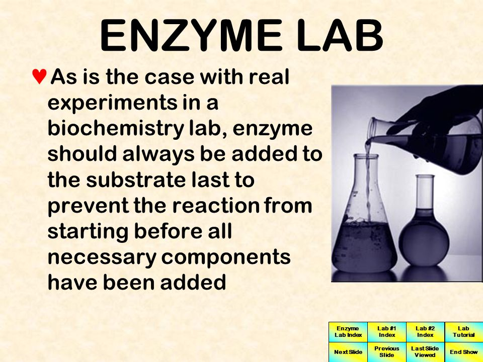 Enzyme Lab Index Lab #1 Index Lab #2 Index Next Slide Previous Slide Last Slide Viewed Lab Tutorial End Show ENZYME LAB To begin the experiment we will determine the pH of the substrate  The substrate is the chemical material which the enzyme will be acting on