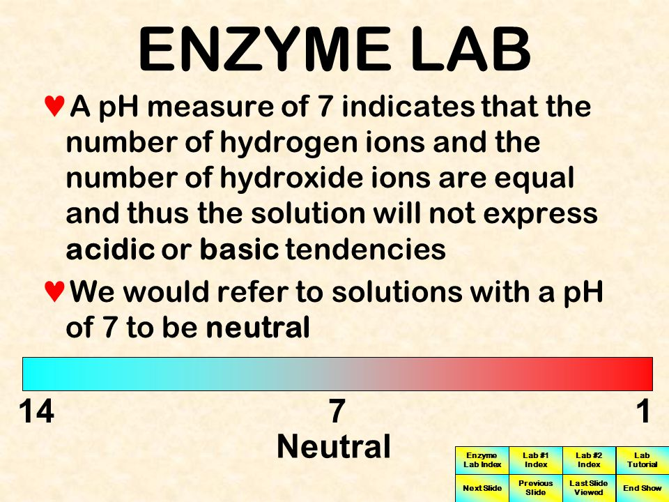 Enzyme Lab Index Lab #1 Index Lab #2 Index Next Slide Previous Slide Last Slide Viewed Lab Tutorial End Show ENZYME LAB Thus the lower the pH the more acidic the solution is The pH scale ranges from a low of 1 to the highest pH of 14 1471