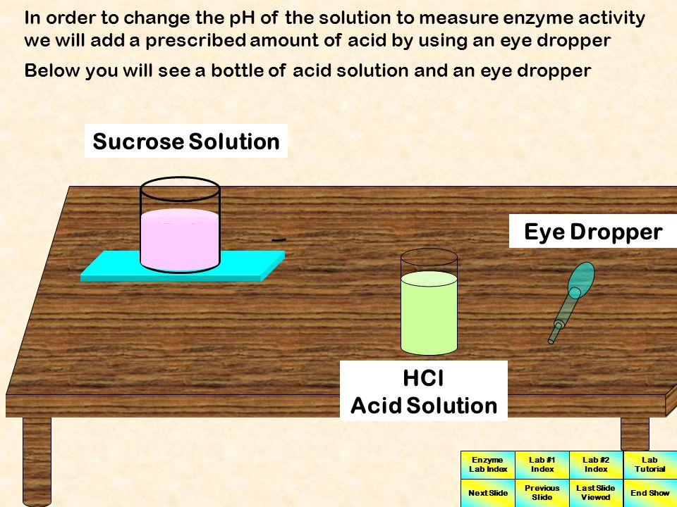 Enzyme Lab Index Lab #1 Index Lab #2 Index Next Slide Previous Slide Last Slide Viewed Lab Tutorial End Show To measure the pH of the solution click on the pH Probe The resulting value indicated on the pH meter can now be recorded 7 pH pH Meter pH Probe