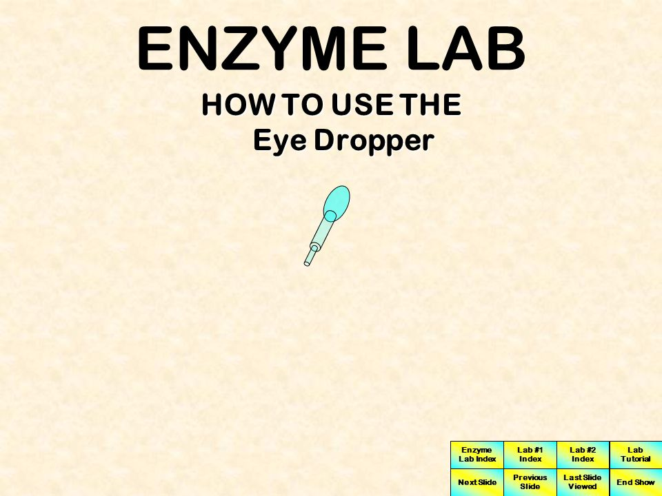 Enzyme Lab Index Lab #1 Index Lab #2 Index Next Slide Previous Slide Last Slide Viewed Lab Tutorial End Show In order to change the pH of the solution to measure enzyme activity we will add a prescribed amount of acid by using an eye dropper Below you will see a bottle of acid solution and an eye dropper HCl Acid Solution Sucrose Solution Eye Dropper