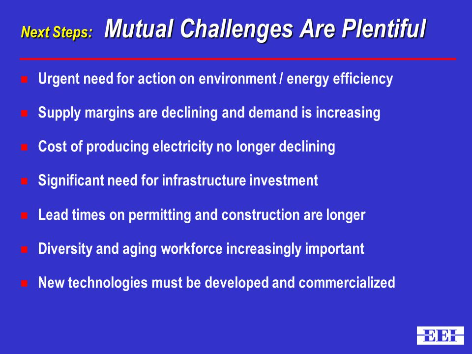 Next Steps: Mutual Challenges Are Plentiful n Urgent need for action on environment / energy efficiency n Supply margins are declining and demand is increasing n Cost of producing electricity no longer declining n Significant need for infrastructure investment n Lead times on permitting and construction are longer n Diversity and aging workforce increasingly important n New technologies must be developed and commercialized