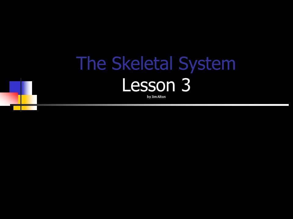 The Skeletal System Lesson 3 by Jim Alton