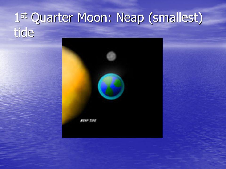 1 st Quarter Moon: Neap (smallest) tide