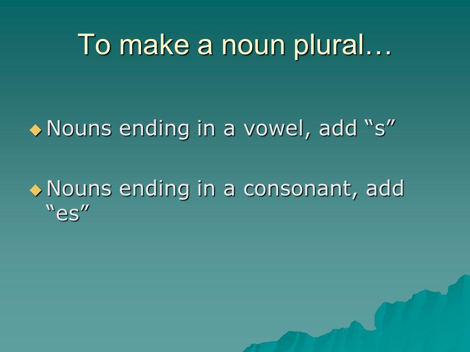"To make a noun plural…  Nouns ending in a vowel, add ""s""  Nouns ending in a consonant, add ""es"""