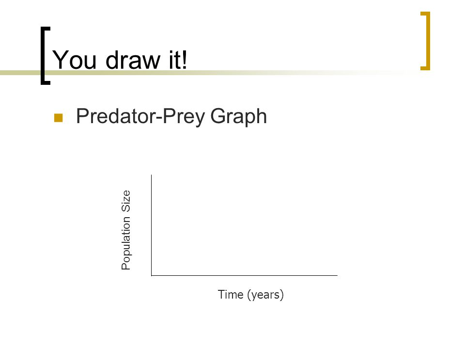You draw it! Predator-Prey Graph Time (years) Population Size