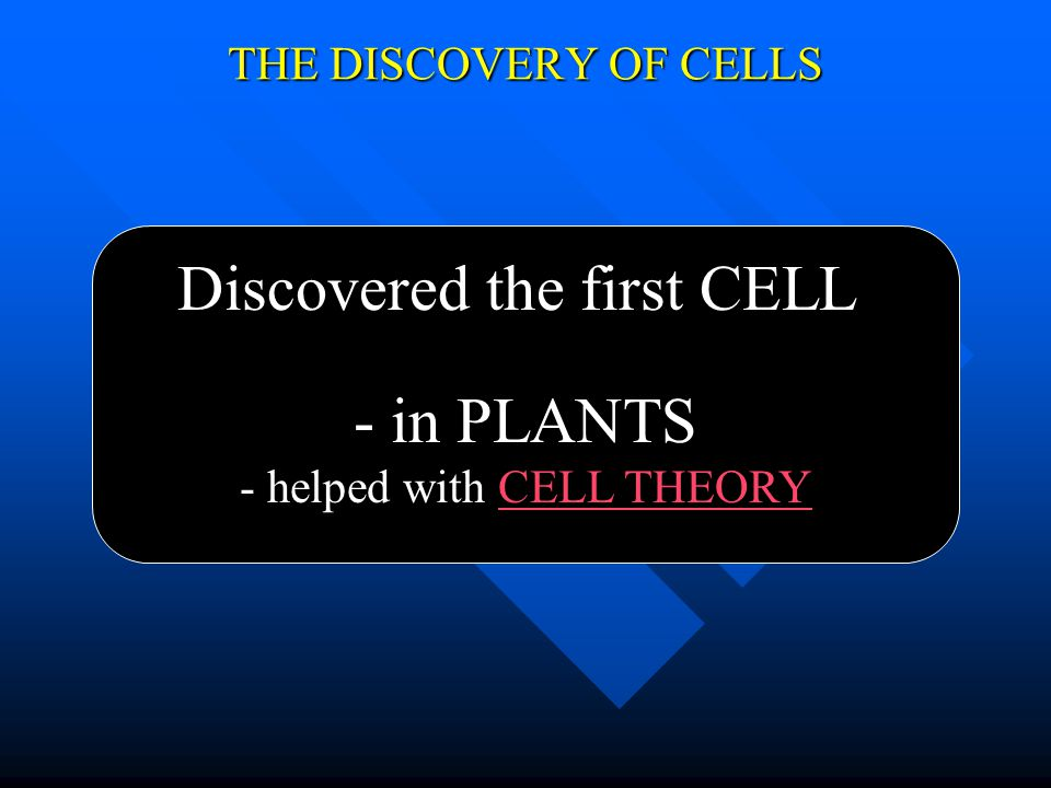 THE DISCOVERY OF CELLS Discovered the first CELL - in cork (dead cells) - named cells for the rooms monks live in