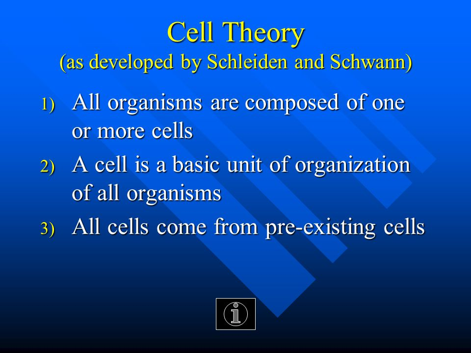 THE DISCOVERY OF CELLS Discovered the first CELL - in ANIMALS - helped with CELL THEORY