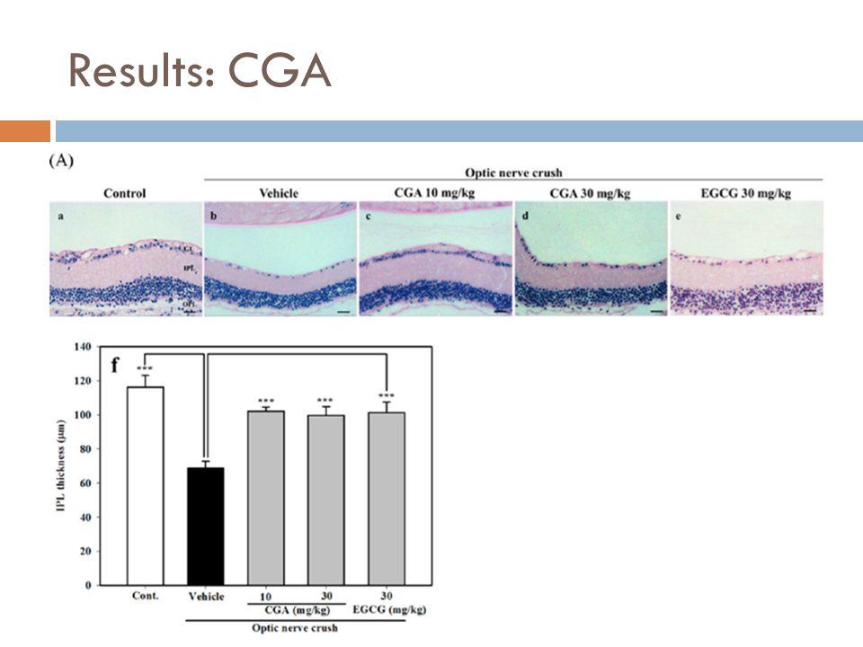 Results: CGA