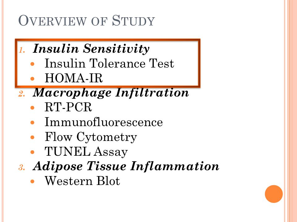O VERVIEW OF S TUDY 1. Insulin Sensitivity Insulin Tolerance Test HOMA-IR 2. Macrophage Infiltration RT-PCR Immunofluorescence Flow Cytometry TUNEL As