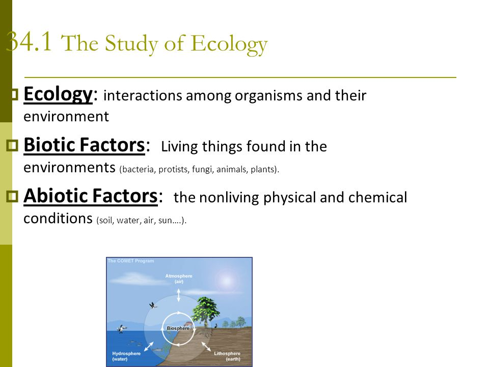 34.1 The Study of Ecology  Ecology: interactions among organisms and their environment  Biotic Factors: Living things found in the environments (bac