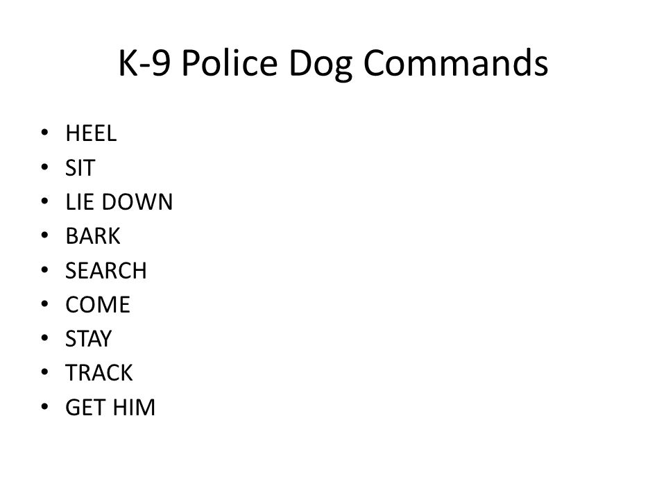 K-9 Police Dog Commands HEEL SIT LIE DOWN BARK SEARCH COME STAY TRACK GET HIM
