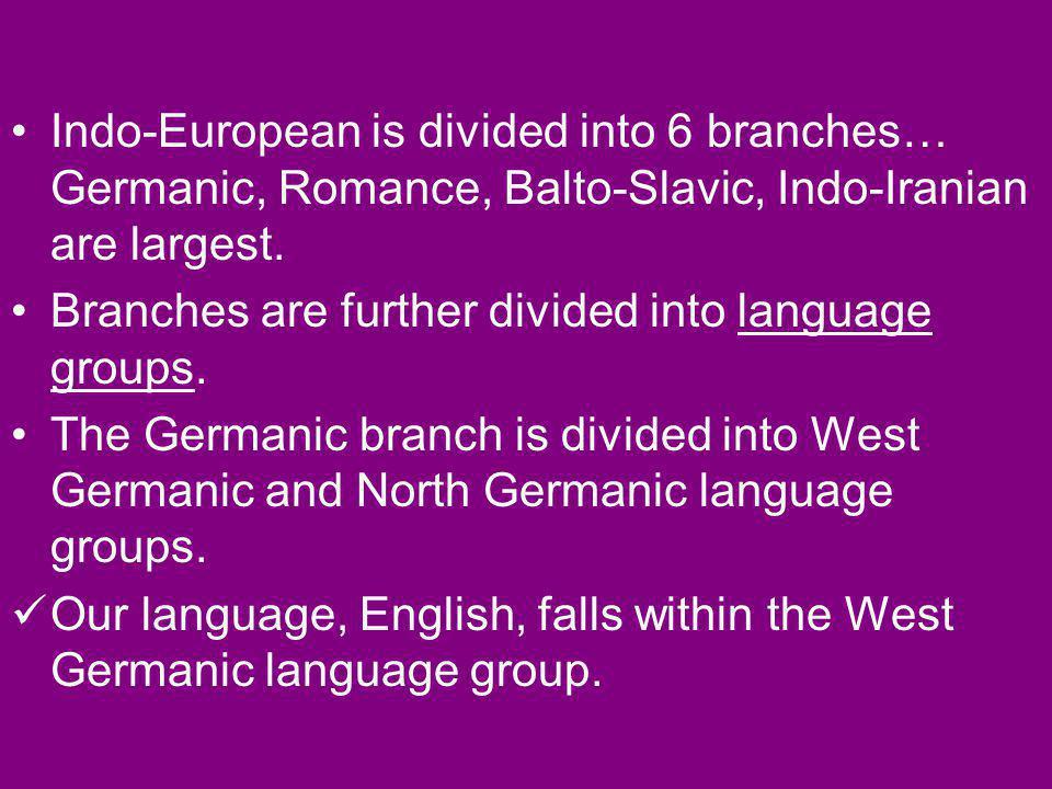 English Language Family: Indo European Langauge Branch: Germanic Language Group: West Germanic Language: English