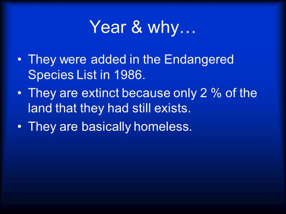 Year & why… They were added in the Endangered Species List in 1986.
