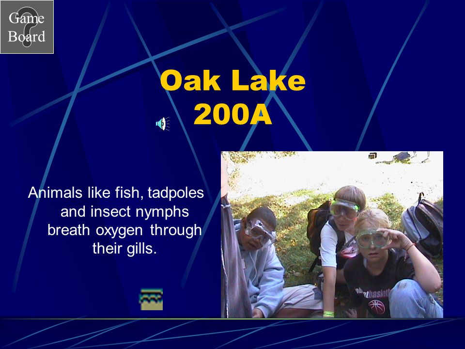 Game Board Oak Lake 200 Why is it important to know the dissolved oxygen level in a lake? Answer