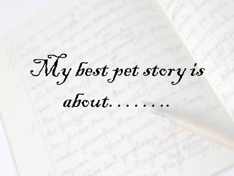 My best pet story is about……..