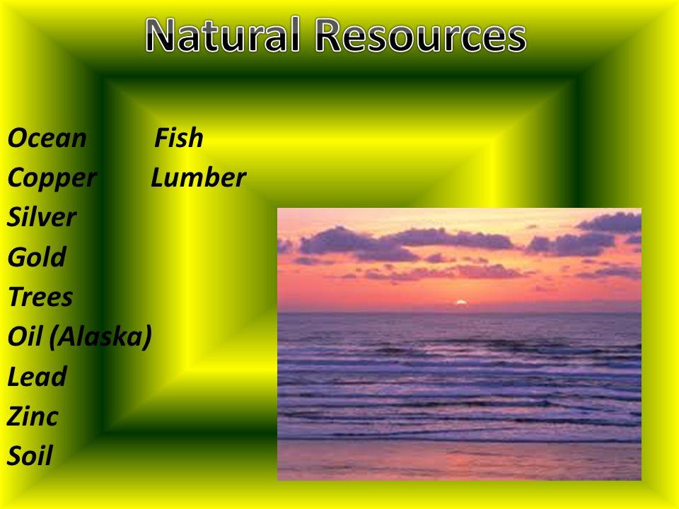 Ocean Fish Copper Lumber Silver Gold Trees Oil (Alaska) Lead Zinc Soil