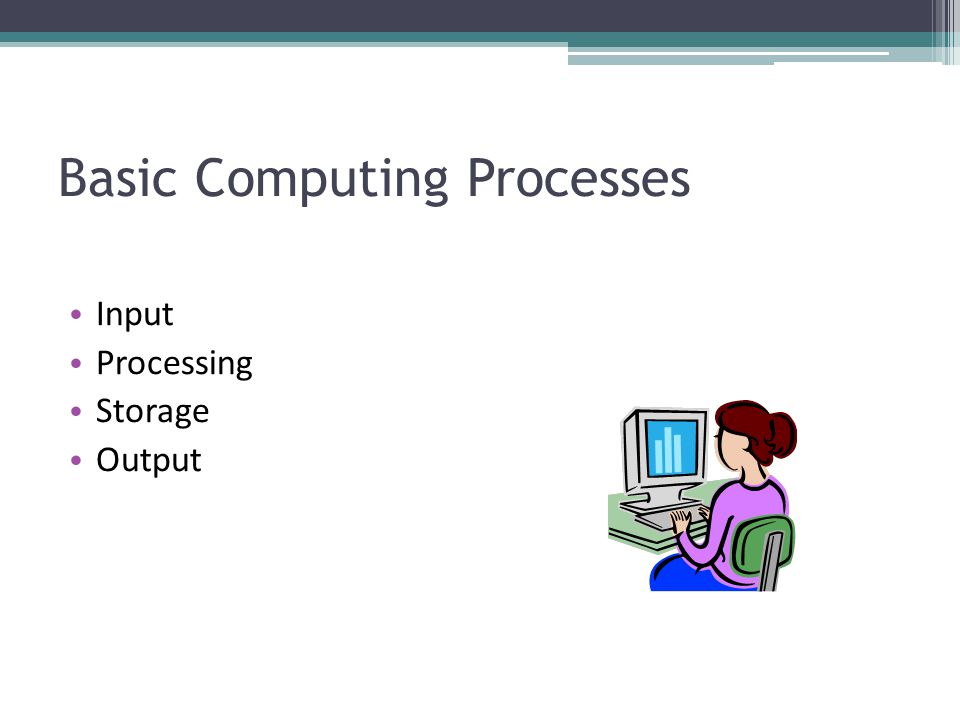 Basic Computing Processes Input Processing Storage Output