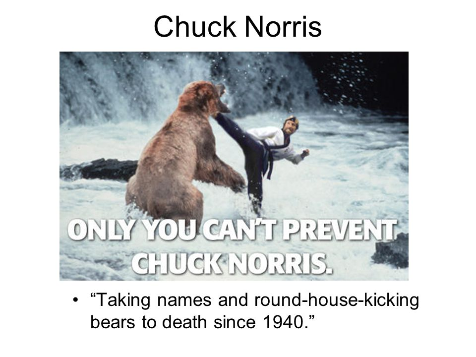 Chuck Norris Taking names and round-house-kicking bears to death since 1940.