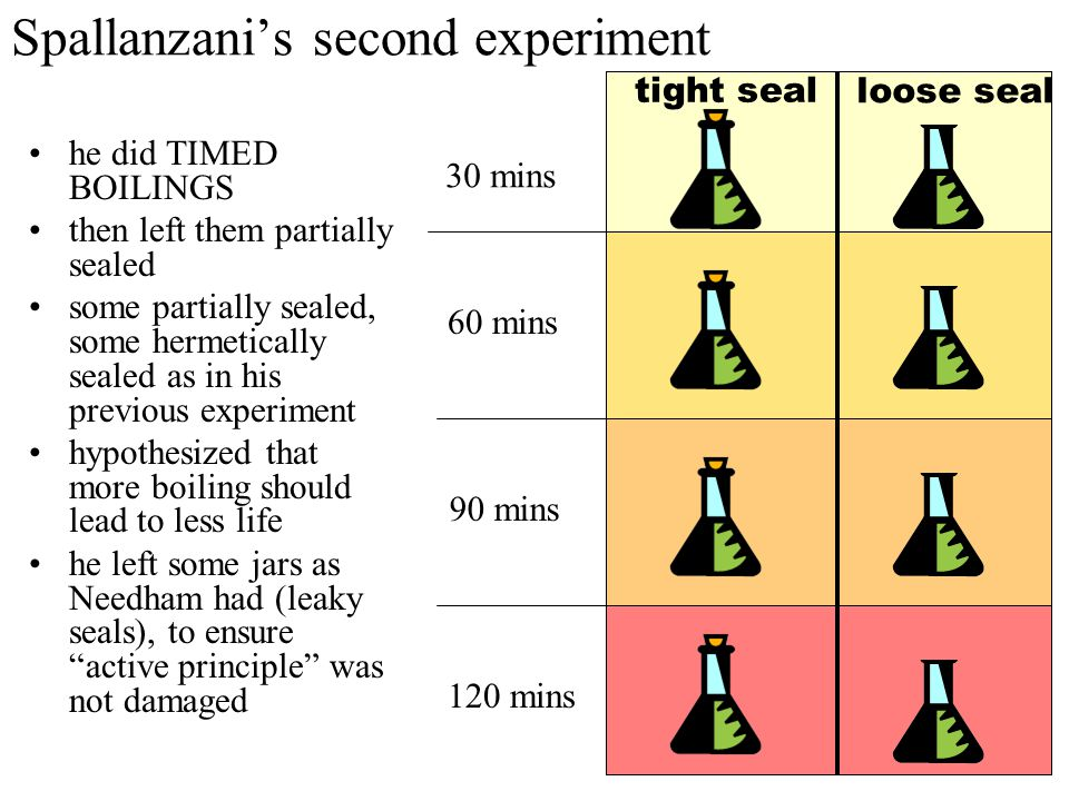 Needham criticizes Spallanzani's first experiment BUT Needham said: you boiled it TOO LONG, and: You spoiled the vegetative power by boiling.