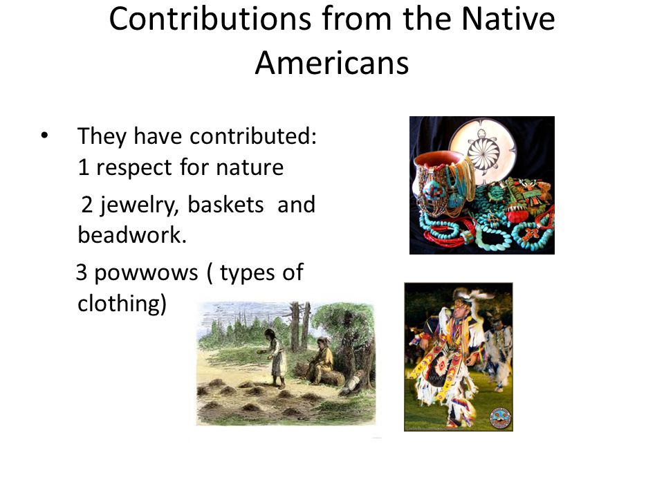 Contributions from the Native Americans They have contributed: 1 respect for nature 2 jewelry, baskets and beadwork.
