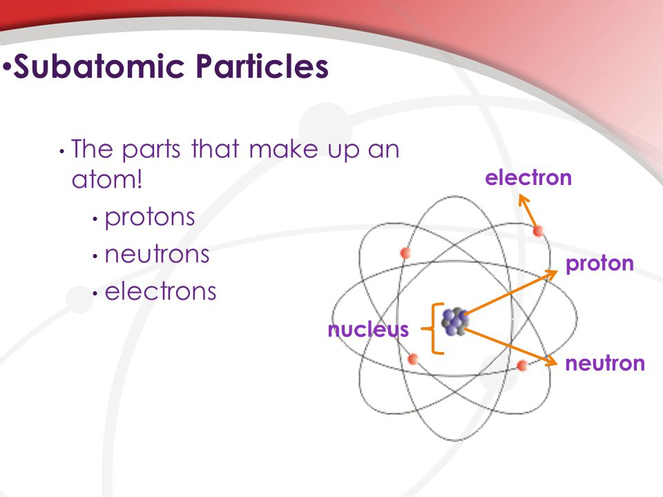 The parts that make up an atom.