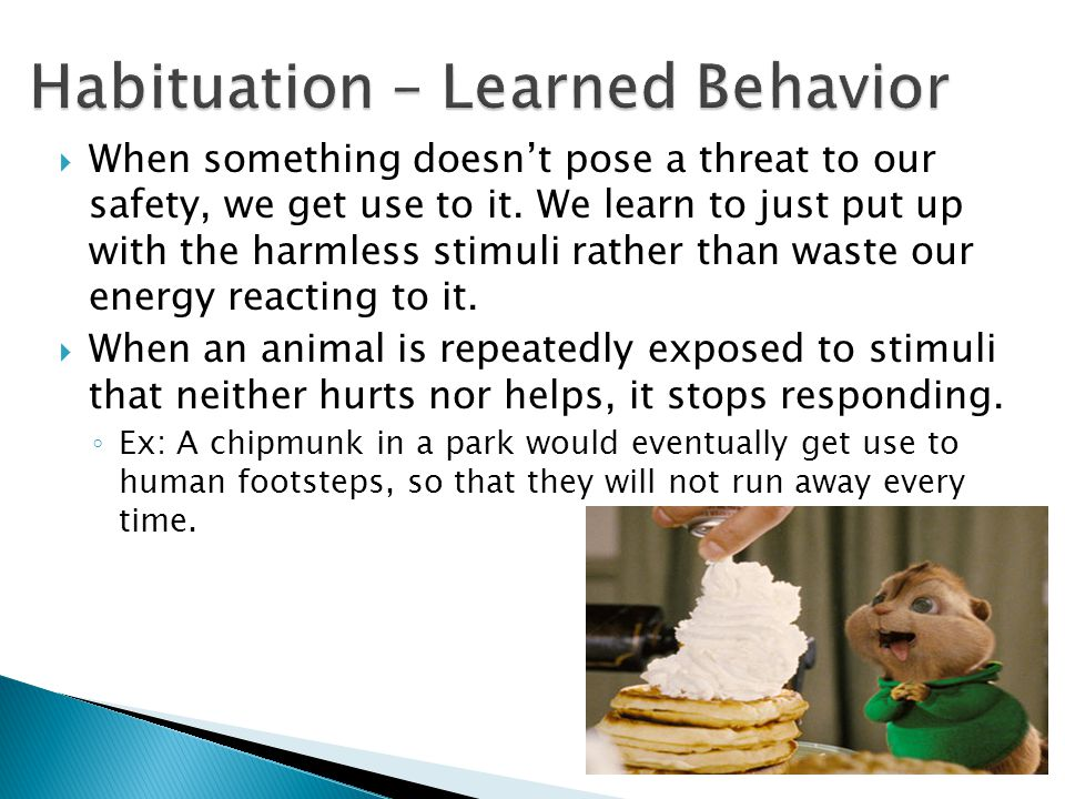  When something doesn't pose a threat to our safety, we get use to it. We learn to just put up with the harmless stimuli rather than waste our energy