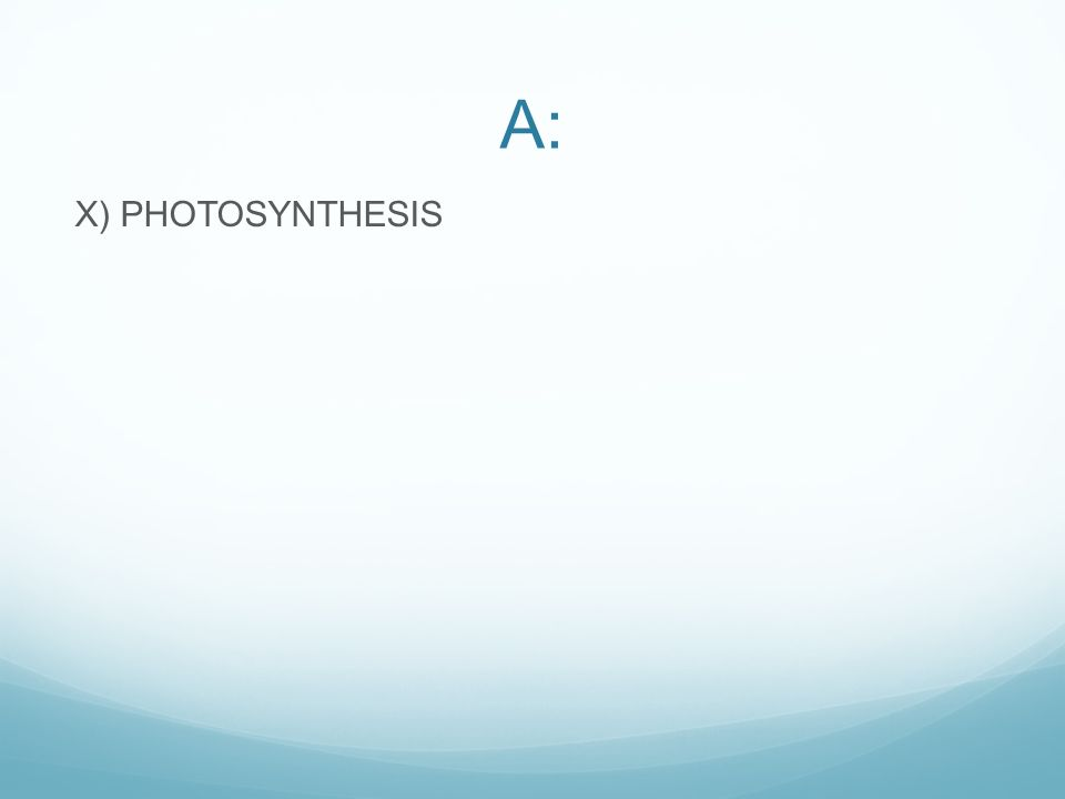 A: X) PHOTOSYNTHESIS
