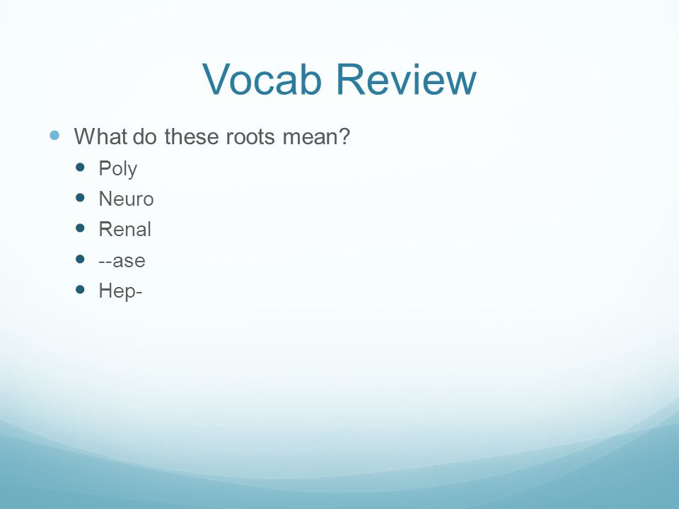 Vocab Review What do these roots mean Poly Neuro Renal --ase Hep-