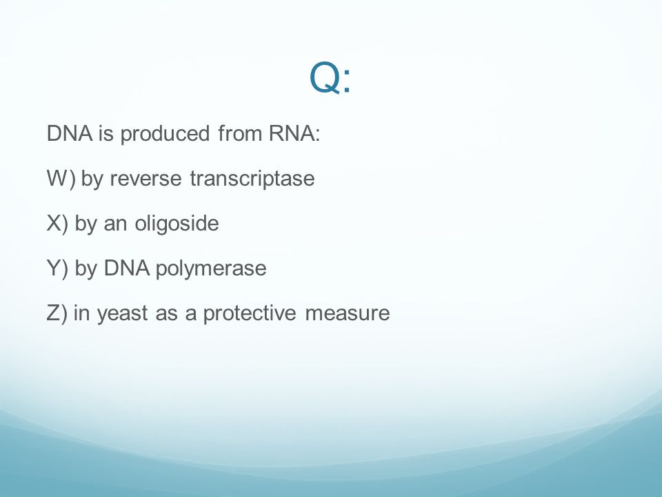 Q: DNA is produced from RNA: W) by reverse transcriptase X) by an oligoside Y) by DNA polymerase Z) in yeast as a protective measure