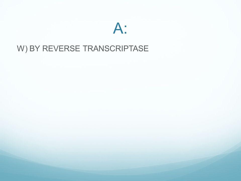 A: W) BY REVERSE TRANSCRIPTASE