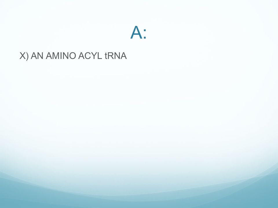 A: X) AN AMINO ACYL tRNA