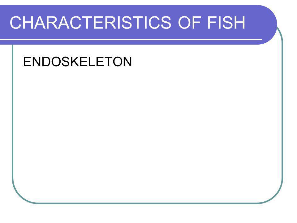 CHARACTERISTICS OF FISH ENDOSKELETON