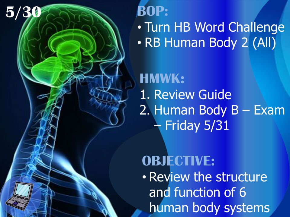 5/30 BOP: Turn HB Word Challenge RB Human Body 2 (All) HMWK: 1.Review Guide 2.Human Body B – Exam – Friday 5/31 OBJECTIVE: Review the structure and function of 6 human body systems