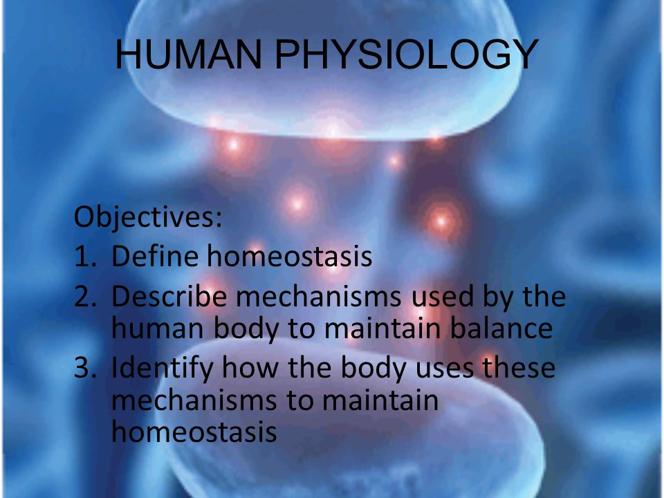 HUMAN PHYSIOLOGY Objectives: 1.Define homeostasis 2.Describe mechanisms used by the human body to maintain balance 3.Identify how the body uses these