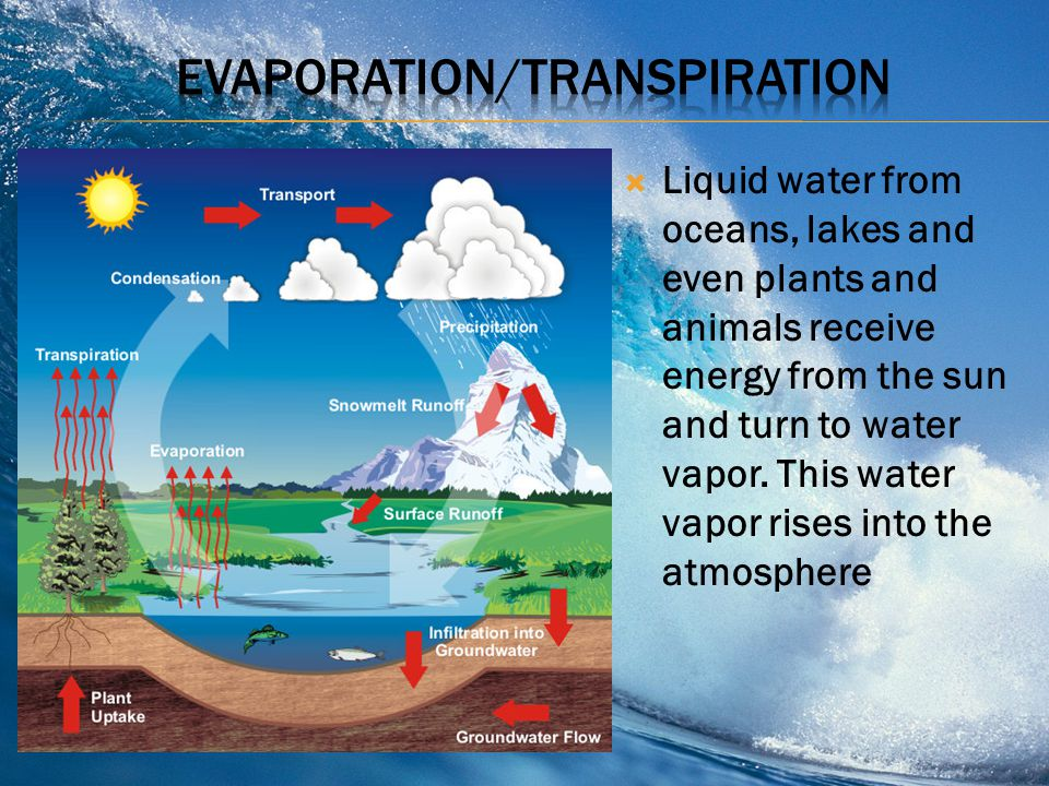  The continuous movement of water from the earths surface into the atmosphere and back  Evaporation, condensation and precipitation make up the wate