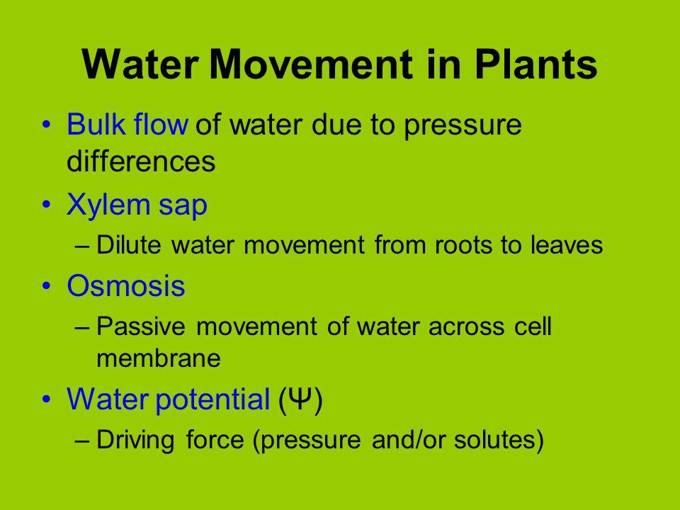 LG 3 Vocab Terms 1.Passive Transport - 2.Active Transport - 3.Osmosis - 4.Water Potential - 5.Apoplastic vs Symplastic Pathway - 6.Casparian Strip - 7.Cohesion-Tension Mechanism - 8.Source - 9.Sink - 10.Pressure Flow Mechanism -
