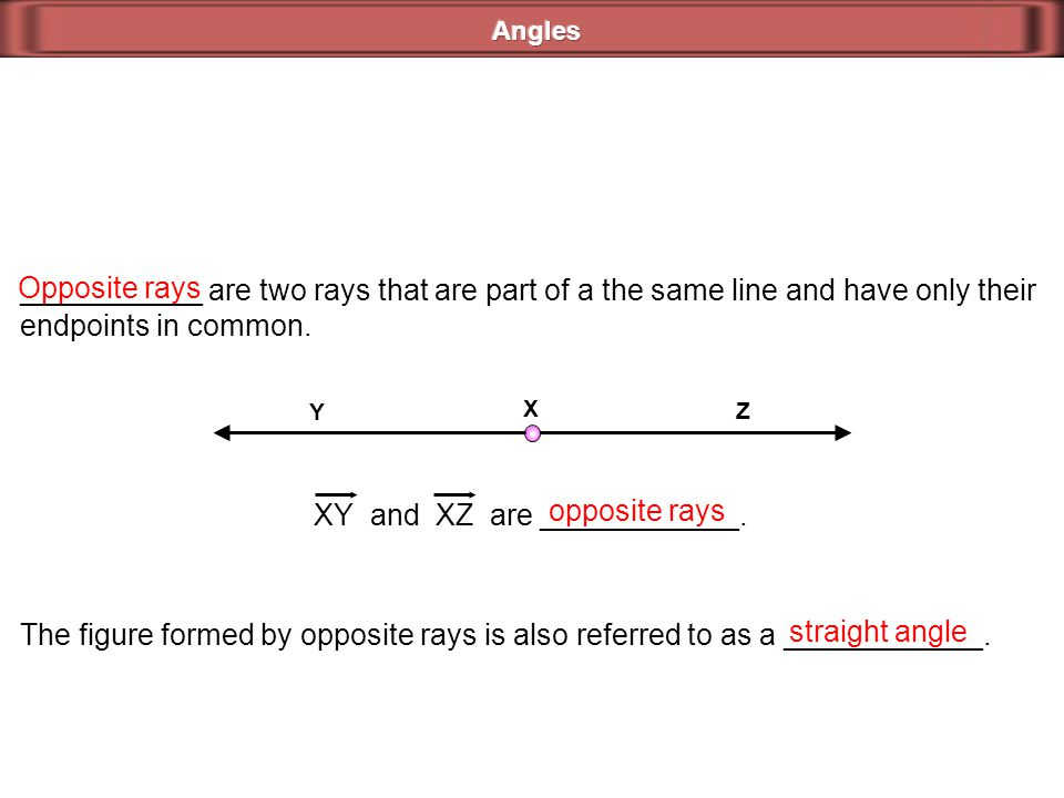 ___________ are two rays that are part of a the same line and have only their endpoints in common. Opposite rays X Y Z XY and XZ are ____________. opp