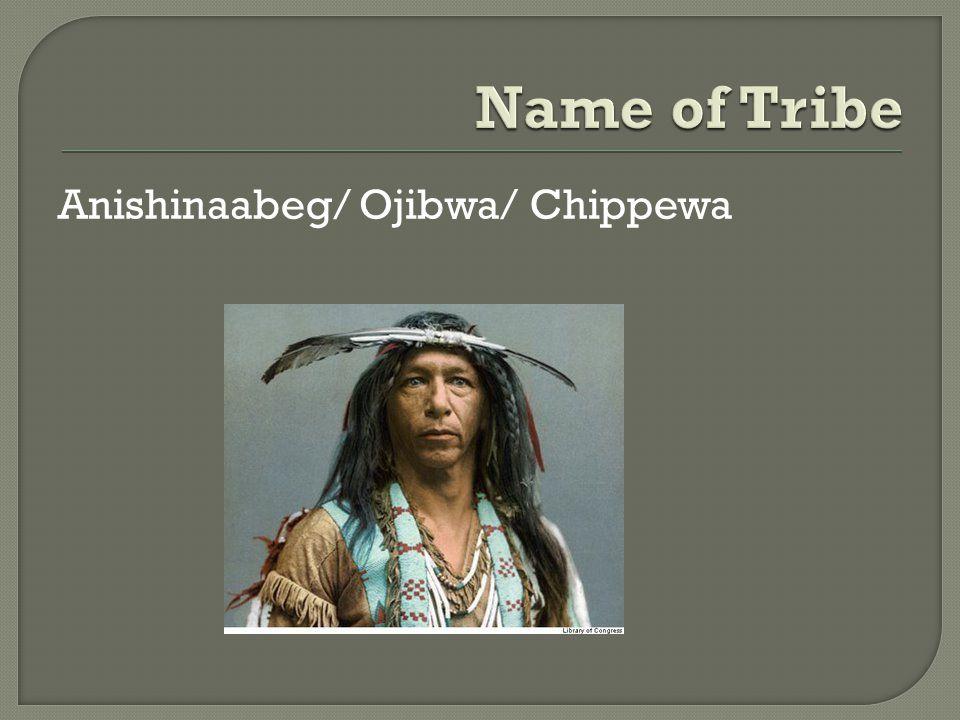 Anishinaabeg/ Ojibwa/ Chippewa