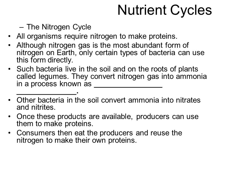 Nutrient Cycles –The Nitrogen Cycle All organisms require nitrogen to make proteins. Although nitrogen gas is the most abundant form of nitrogen on Ea
