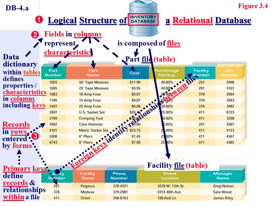 DB-4.a Records in rows entered by forms Fields in columns represent characteristics Part file (table) Part file (table) Figure 3.4 Facility file (table) Logical Structure of a Relational Database  Logical Structure of a Relational Database Data Dictionary defines properties / characteristics in fields including keys Primary keys define records & relationships within a file Foreign keysidentify relationships between files Foreign keys identify relationships between files   is composed of files Logical Structure of a Relational Database  Logical Structure of a Relational Database