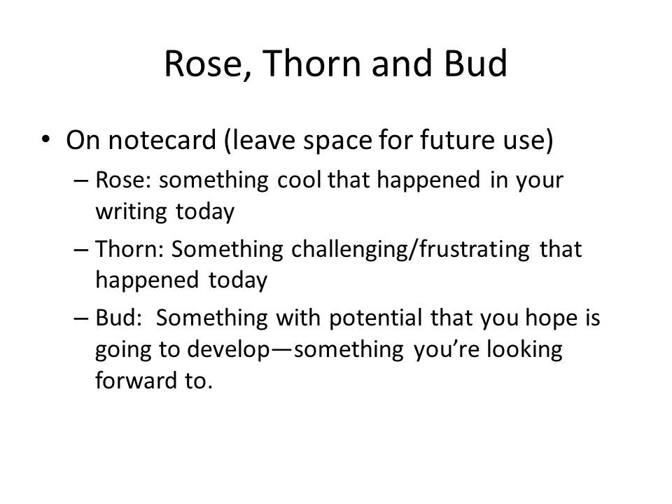 Rose, Thorn and Bud On notecard (leave space for future use) – Rose: something cool that happened in your writing today – Thorn: Something challenging/frustrating that happened today – Bud: Something with potential that you hope is going to develop—something you're looking forward to.