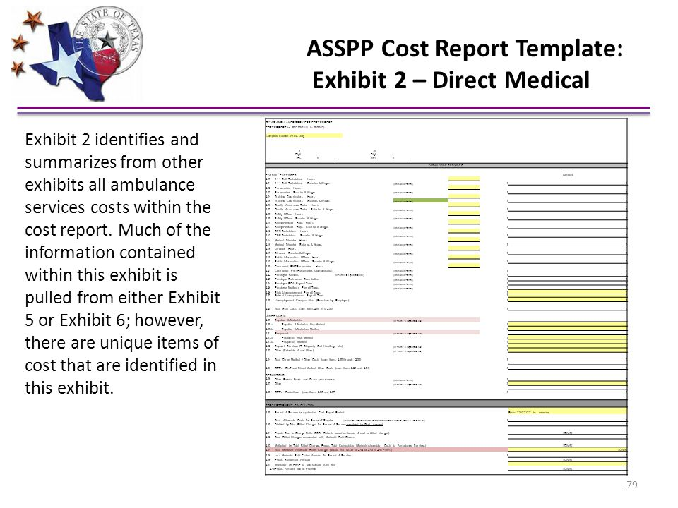 ASSPP Cost Report Template: Exhibit 2 – Direct Medical TEXAS AMBULANCE SERVICES COST REPORT COST REPORT for 2012 03/01/11 to 09/30/12) Complete Shaded