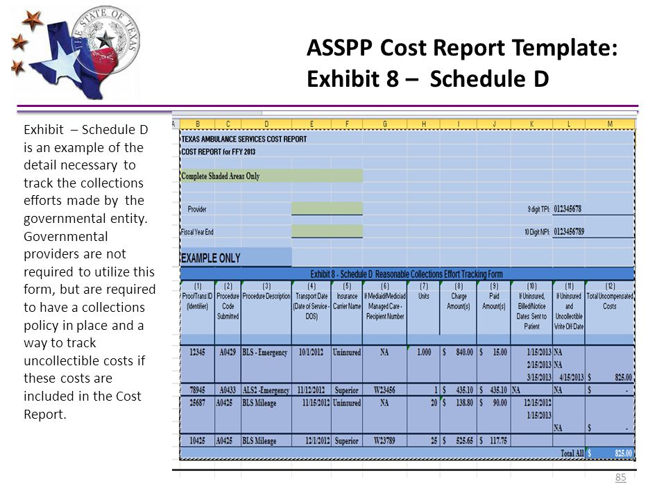 ASSPP Cost Report Template: Exhibit 8 – Schedule D Exhibit – Schedule D is an example of the detail necessary to track the collections efforts made by