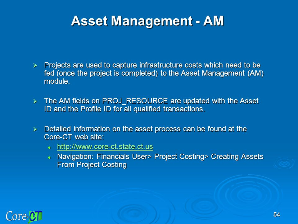54 Asset Management - AM  Projects are used to capture infrastructure costs which need to be fed (once the project is completed) to the Asset Managem