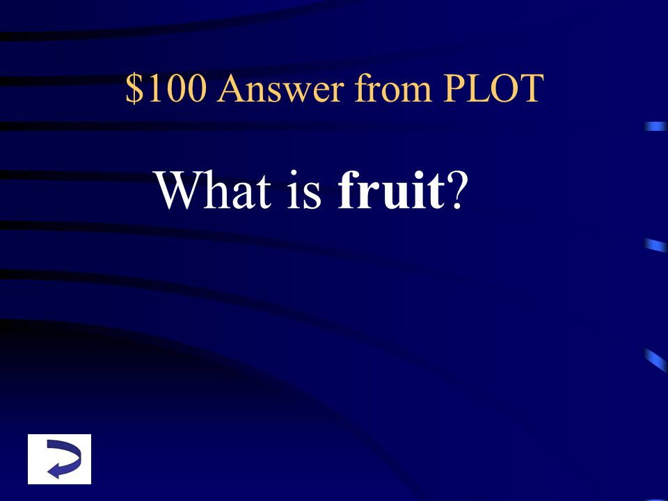 $100 Answer from PLOT What is fruit