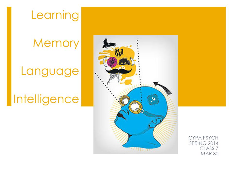 Learning Memory Language Intelligence CYPA PSYCH SPRING 2014 CLASS 7 MAR 30