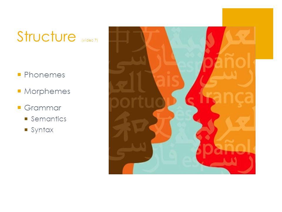 Structure (video 7)  Phonemes  Morphemes  Grammar  Semantics  Syntax